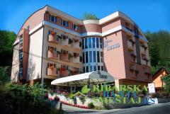 Hotel vila Di Lusso - hoteli u Ribarskoj Banji