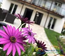 Apartani Zeleni dvor - apartmani u Ribarskoj Banji